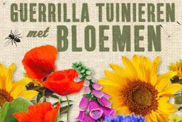 Zaadbommen – guerrilla-tuinieren