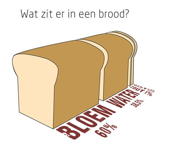 Brood_featurd